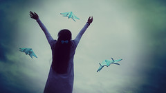 Dreaming (sunnychan1998) Tags: freedom flying conceptual paperplanes alevelphotography a2photography erinhanson