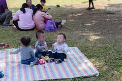 BM7Q4381.jpg (Idiot frog) Tags: park family boy sunlight cute boys field grass kids children happy daylight picnic child outdoor bade happiness sunbath daytime joyful taoyuan happyhour hangout ecosystem