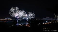 View from Coit Tower - Bay Lights Re-Lighting and Super Bowl City Fireworks Show - 013016 - 01 (Stan-the-Rocker) Tags: sanfrancisco sony coittower northbeach embarcadero ferrybuilding telegraphhill nex sanfranciscooaklandbaybridge sfobb sb50 baylights sel1855 stantherocker