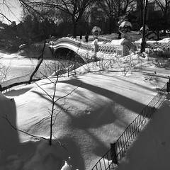 There must be something between us, even if it's only an ocean. (larrycloss) Tags: nyc newyorkcity snow ny newyork square nikon centralpark squareformat jonas blizzard bowbridge centralparknyc nikond40x d40x iphoneography instagramapp uploaded:by=instagram foursquare:venue=4f87534ae4b0ab0c19244a43