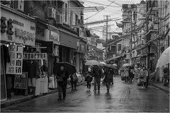 Rainy Day (Chris Lue Shing) Tags: china street city travel rain blackwhite shanghai candid umbrellas oldtown oldcity shanghaishi fujixa1 chrislueshing fujifilmxc1650mmf3556ois