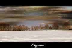 Landscape (patrick.verstappen) Tags: trees winter snow texture painting landscape photo yahoo google nikon flickr belgium pat january textured facebook picassa twitter gingelom d7100 pinterest