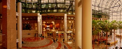 Interior Panoramic View Of Winter Garden Atrium (nrhodesphotos(the_eye_of_the_moment)) Tags: nyc trees decorations urban signs men glass metal architecture reflections store women shadows floor manhattan candid interior columns steps scenic panoramic ceiling financialdistrict palmtrees wintergarden vista atrium circular plantlife northcove modernistic flickrsbest brookfieldplace dsc05492 theeyeofthemoment21gmailcomwwwflickrcomphotostheeyeofthemoment