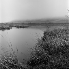 Baskett Slough In Fog (Barry McBeth) Tags: grass fog rolleiflex pond kodak wildlife trix stock foggy national 400 marsh 35 slough wetland refuge grassy xenar xtol schneiderkreuznach 75mm baskett mxevs rolleimeter
