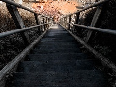 One step at a time (Sir snap) Tags: wood sea cliff beach coast stones steps down pebbles descend