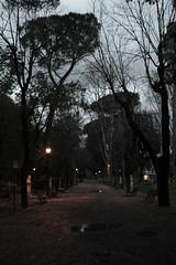 Villa Borghese [Emptiness] ({Gasoline Rainbow) Tags: park italy parco rome roma rain italia villa pioggia borghese viale
