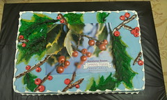 Congratulations Cake (tasteoflovebakery) Tags: blue red green cake sheet congratulations congrats