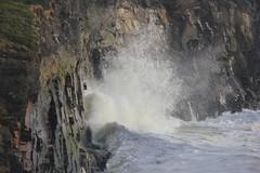 IMG_8350 (DaveGifford) Tags: ireland spanishpoint wildatlanticway