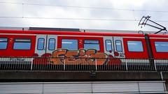 Graffiti in Kln/Cologne 2015 (kami68k [Cologne]) Tags: train graffiti cologne kln ps db illegal bombing bunt feis 2015