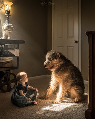 A Girl and Her Dog (Adr.murray) Tags: family dog baby home childhood fuji child terrier fujifilm airedale xt1