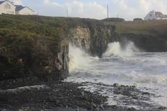 IMG_8378 (DaveGifford) Tags: ireland spanishpoint wildatlanticway
