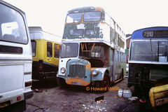 A sad tale (SelmerOrSelnec) Tags: preserved salford daimler gmt mcw ccg6 metrocammell dukinfield arj189b