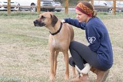 New Buddies (brettswift) Tags: dog calgary enzo