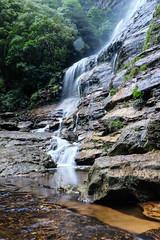 DSCF4594-2 (M.D.Rozen) Tags: nature bush hiking sydney australia fujifilm cascade bushwalk katoomba leura x100t