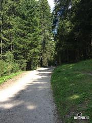 Trentino 2015 (in viaggio senza coda) Tags: italia it agosto betta camper norah cibo paesaggio trentino federico cani campitellodifassa trentinoaltoadige trentinok uncamperdue