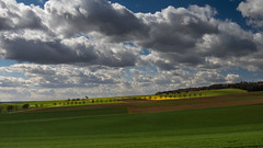 Spring is in the air (Eklis273) Tags: wolken clouds fields felder grün green blue blau himmel sky yellow gelb landscape landschaft platinumpeaceaward