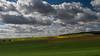 Spring is in the air (Eklis273) Tags: wolken clouds fields felder grün green blue blau himmel sky yellow gelb landscape landschaft platinumpeaceaward