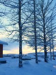 Iceland's wintry landscape in the New Year (PsJeremy) Tags: winter snow cold frozen iceland winterblue