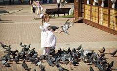 The girl with pigeons /    (burovvv) Tags: bird girl childhood child pigeon dove joy