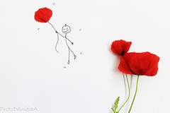 POPpies Art  (explored... thanks!) (*ameLIE*) Tags: red white flower color art nature kids illustration creativity happy fly sketch funny arty drawing creative dream minimal poppies draw fiori ballons petali papaveri poppie papavero nuju disegner