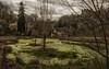 At the foot of Montaigle Castle (Eric@focus) Tags: castle pond belgium ruin atmosphere medieval villa namur greatphotographers condroz montaigle colorefexpro 3000v120f falaën viveza spiritofphotography greenbeautyforlife nikond7100