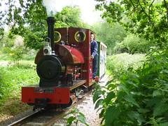 P1050709 (Hampton & Kempton Waterworks Railway.) Tags: loop devon galaday 2015 darent