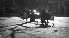 breaking down. (jasonblacquierephotography) Tags: street toronto citylife tone struggle breakingdown