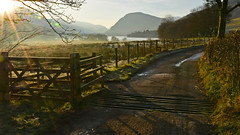 Loweswater Gold (odell_rd) Tags: fence ngc lakedistrict loweswater coth5