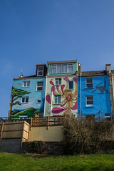 Totterdown mural terraces (clogette) Tags: england flower colour tree art architecture bristol monkey mural unitedkingdom gb totterdown
