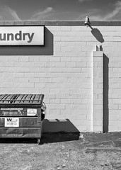 Coin Laundry (B/W) (autobahn66.com) Tags: street city urban blackandwhite texture monochrome geometry contemporary structure simple minimalist