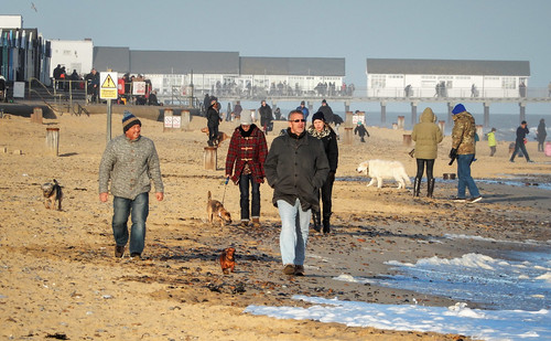 Southwold Dog Walkers