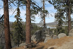 Always Evergreen (Esther Spektor - Thanks for 10+ millions views..) Tags: california winter sky mountain lake tree rock pine canon landscape branch shadows view trunk bigbear firtree estherspektor