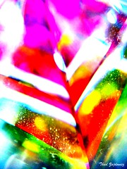 Bright prism (Thad Zajdowicz) Tags: red abstract color colour macro green glass lines yellow purple bright vibrant creative picasa prism vivid maryland indoor turbo motorola saturation layers bethesda hmm android droid montgomerycounty macromonday easymacro zajdowicz