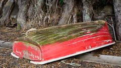 Resting (frozenpuddle) Tags: red newzealand boat nz waikato rowing ferrylanding
