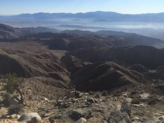Enjoying the View of Coachella Valley from Keys View at Joshua Tree National Park - #1 (Blue Rave) Tags: california park mountains nature hiking joshuatree hike viewpoint joshuatreenationalpark 2016 keysview jtnp iphonephotography iphoneography