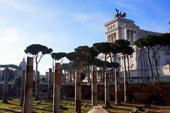 Trajan Forum at dawn, Rome (mattk1979) Tags: italy rome roma building history sunrise dawn ruins italia roman outdoor forum trajan