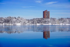 Jamaica Pond, Boston ((Jessica)) Tags: blue trees winter white snow reflection building ice nature water boston landscape frozen pond massachusetts newengland minimal clean clear simple minimalist pw emeraldnecklace jamaicapond winterstormlexi