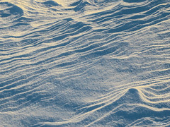 Snow ripples - Ondulations de neige (monteregina) Tags: blue schnee winter snow canada art nature lines vent design shadows wind abstractart stripes patterns hiver details curves snowdrift natur snowstorm shapes structures angles bleu textures direction qubec windswept designs layers neige ripples minimalism drifts bandes formations couches snowscape snowbanks ombres winterscape tempte deposit abstrait snowsculptures abstractnature winterlandscapes courbes formes winderosion minimalisme amass minimalistlandscape accumulated poudrerie venteux snowdunes paysagedhiver windblownsnow monteregina bancsdeneige dunesdeneige sculpturesdeneige natureabstraite snowripples paysageminimaliste ondulationsdeneige