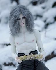 ThePresence017 (Red Ribboned Dolls) Tags: david redribbon sd bjd abjd urke photostory dollshe kuncci woroh urkeresh
