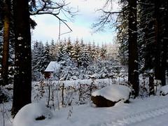 Idyll (isajachevalier) Tags: winter haus sachsen landschaft wald bume
