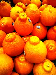 Oranges (Thad Zajdowicz) Tags: cameraphone food orange color colour texture mobile closeup fruit store pattern bright cellphone maryland indoor motorola aviary produce oranges grocery silverspring droid commissary montgomerycounty zajdowicz
