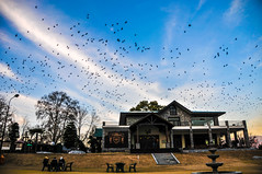 PIFFERS Golf Club - Abbottabad (aaphilo) Tags: golf abbottabad piffers