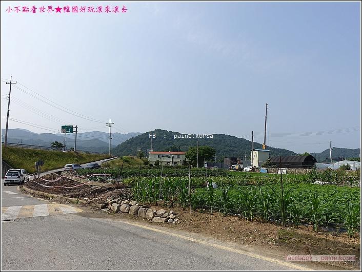 牙山外巖民俗村 (7).JPG