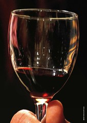 QZ 252 (cadayf) Tags: reflection glass wine 33 reflet vin tasting chteau cellar chai couleur dgustation verre atelier gironde pcle hautbourcier