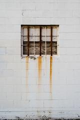 Window - Day 099 (dogwelder) Tags: window wall burbank cinderblock