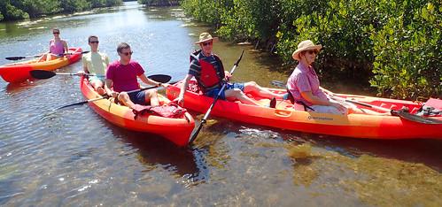 3_4_16 Kayak Tour Sarasota FL 02