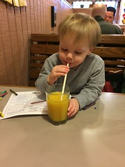 "Paul Drinks Daddy's Orange Juice at Egg Harbor • <a style=""font-size:0.8em;"" href=""http://www.flickr.com/photos/109120354@N07/25447314263/"" target=""_blank"">View on Flickr</a>"