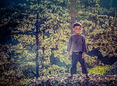 Enroute - Tezpur to Tawang (Paul Nicodemus) Tags: travel people mountains reflection sunshine clouds temple landscapes skies azure bridges adventure solo rivers fields assam himalayas valleys arunachalpradesh