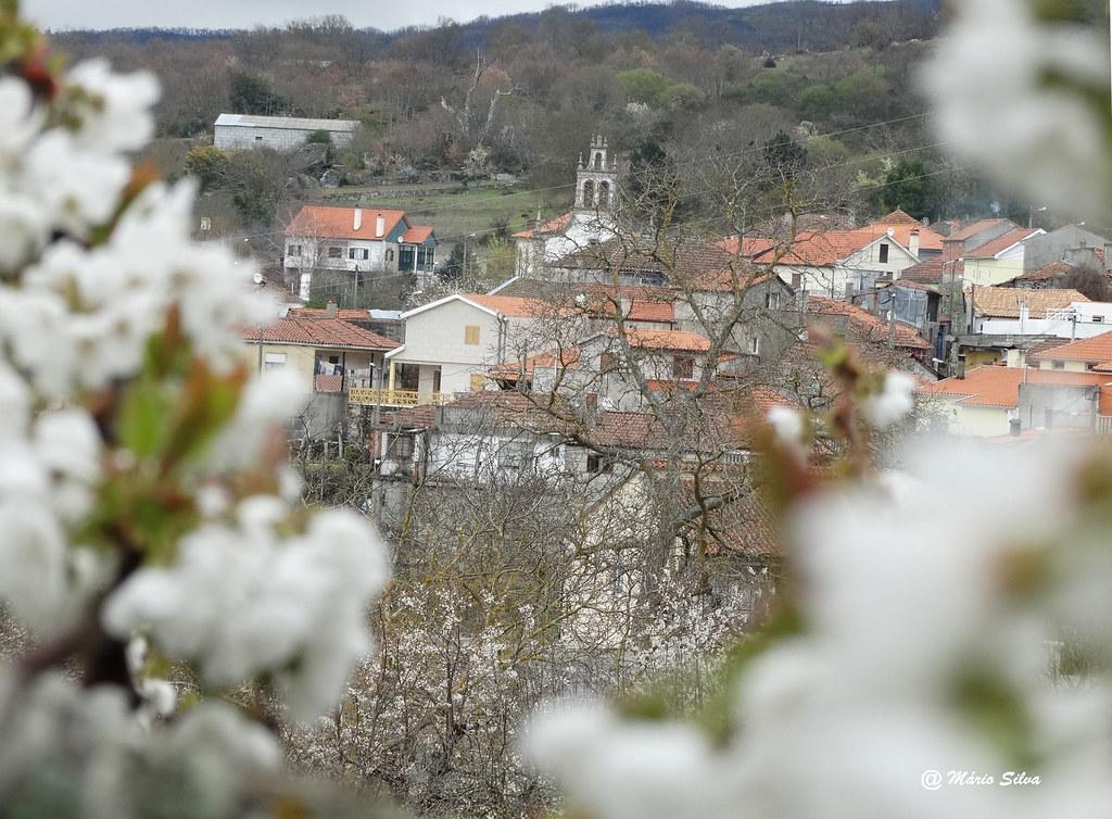 Águas Frias (Chaves) - ... aldeia entre ramos floridos ...