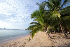 IMG_9110_edited-1 (Lauren :o)) Tags: ocean blue sea sky beach thailand island paradise kohtao turtleisland desertisland saireebeach sairee